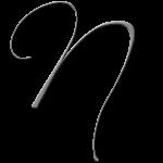 N Monogram Silver